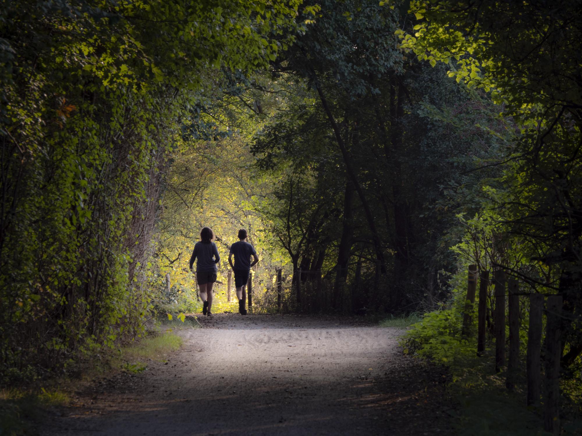 trail running ChiRunning 4